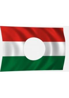 56-os magyar zászló
